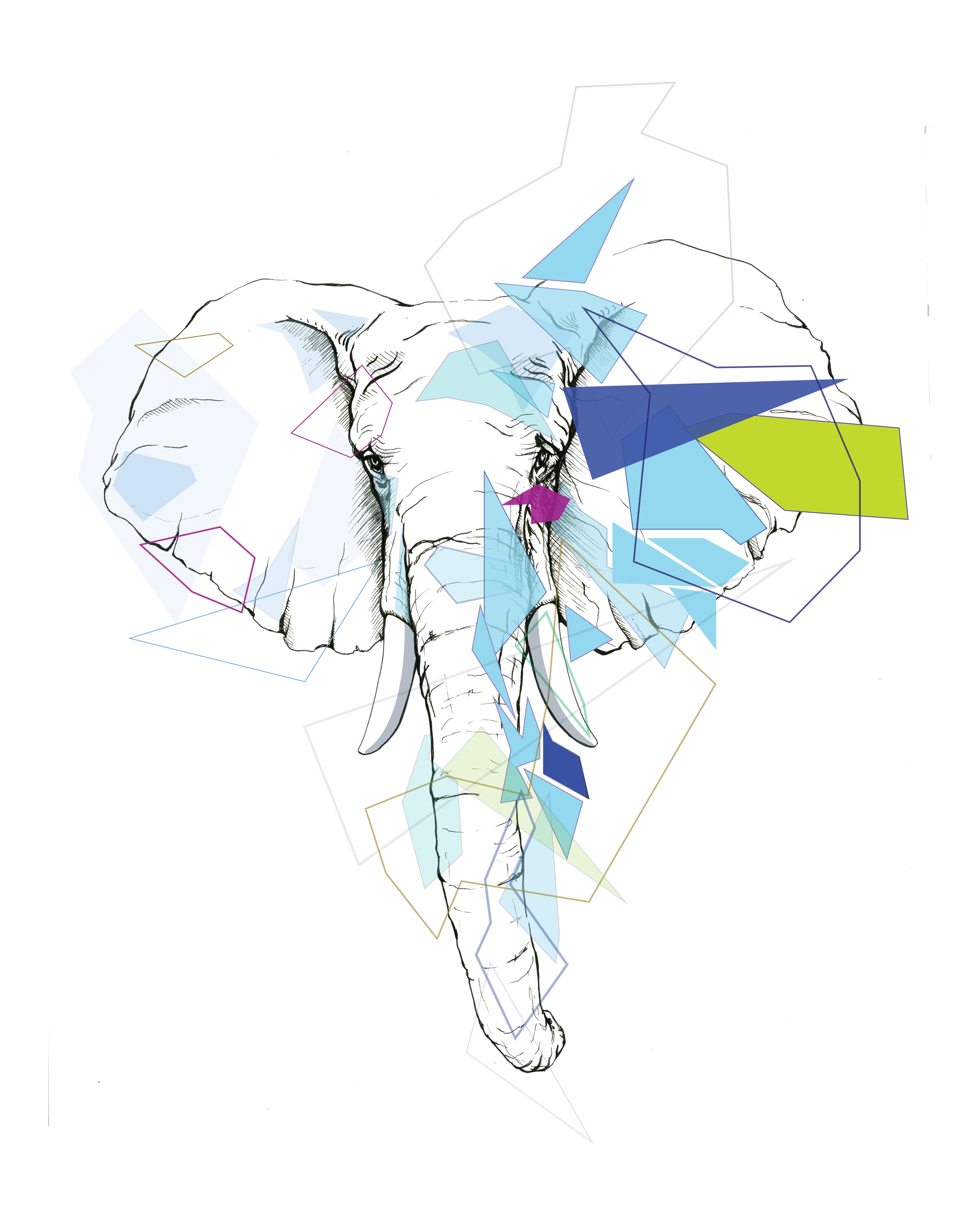 Geometric Elephant Drawing